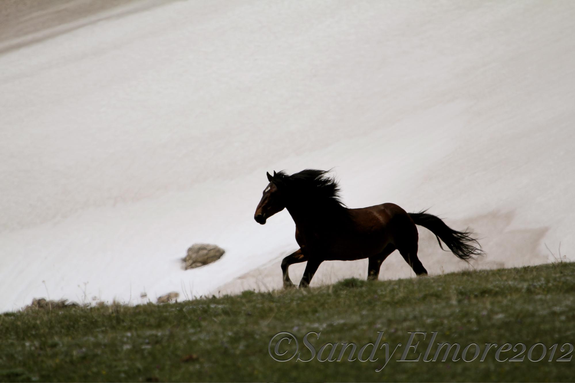 Santa Fe, May 20, 2012