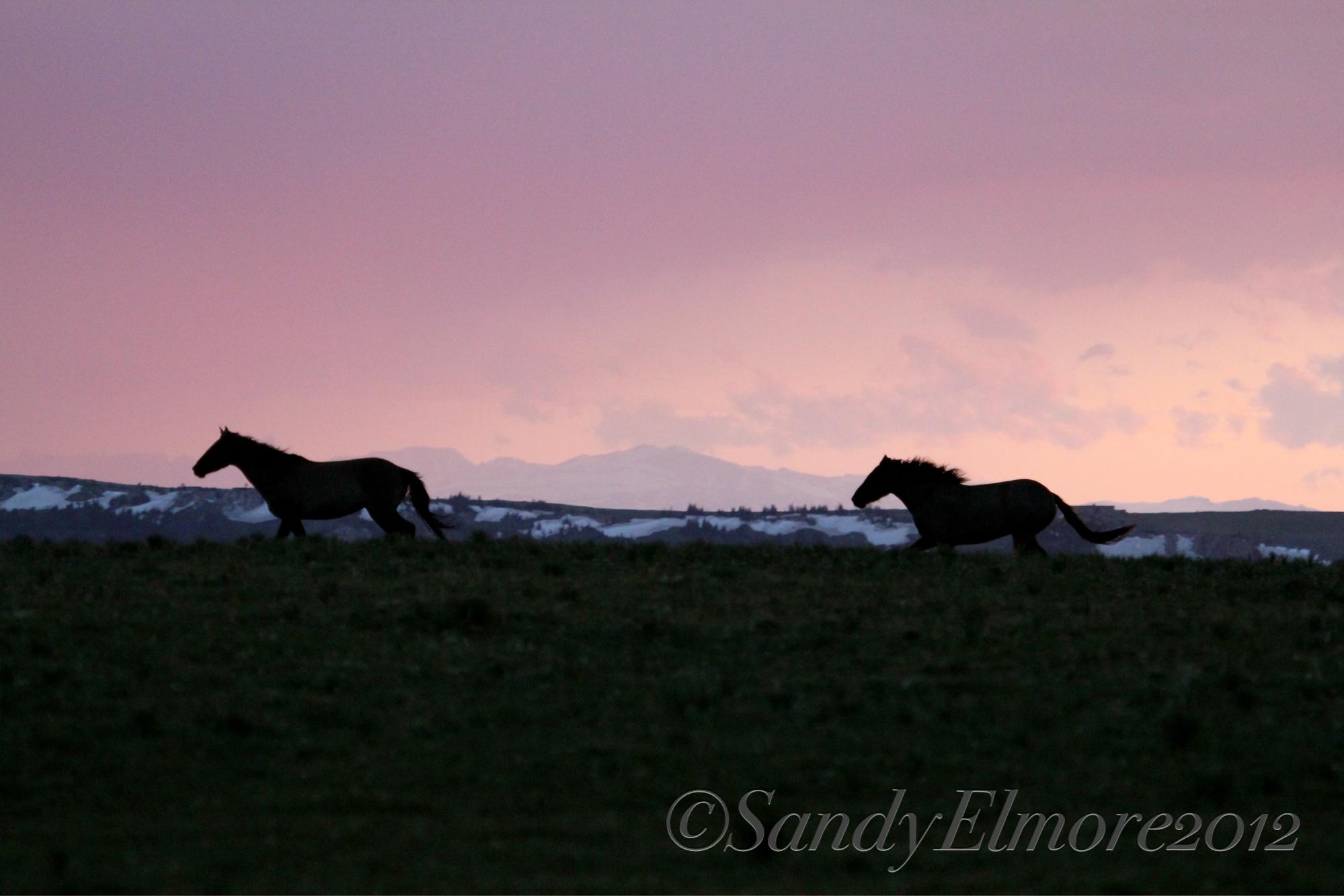 Sunset, June 17, 2012