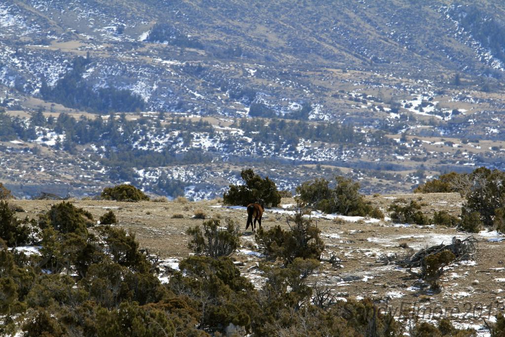 Santa Fe heading over to the band