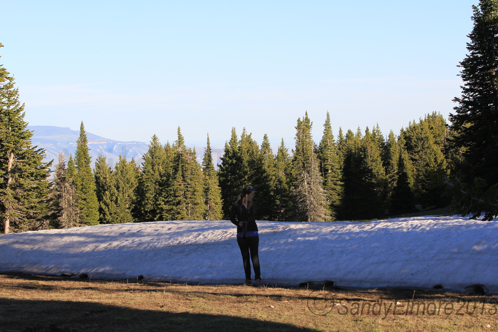 Amber standing by one of the many snow drifts.  We thought this one was big, until we saw the next!