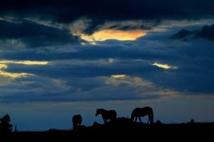 Sky at sunset, September 8, 2013