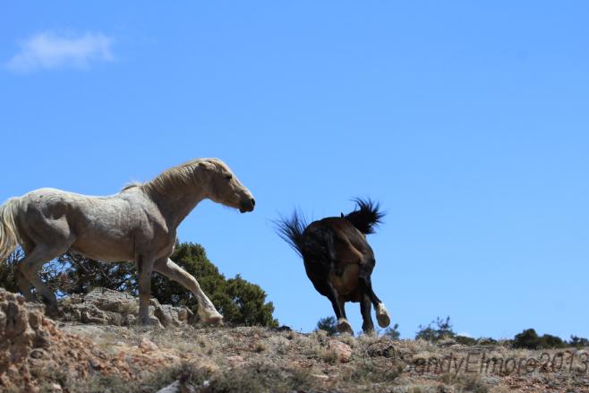 Cloud and Santa Fe, April 2013