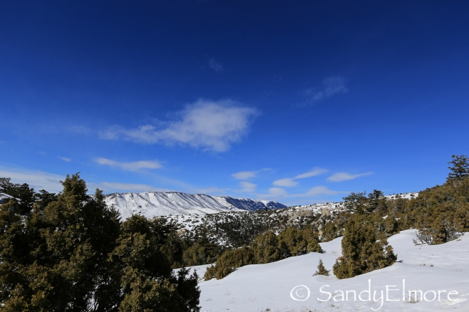Wide-angle shot of the surrounding beauty.