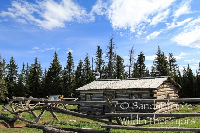 Penns Cabin