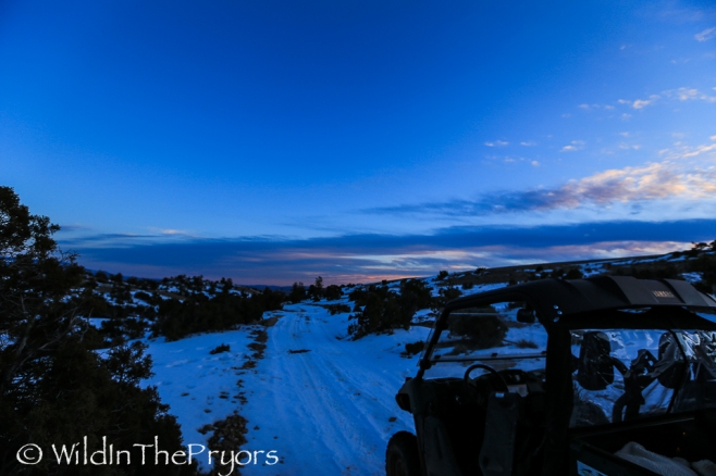 Sunset on Burnt Timber Road, February 2014